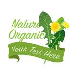 Colorful watercolor texture vector nature organic vegetable banner dandelion leaf