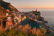 Vernazza Sunset - 165193185