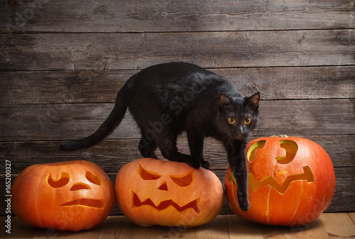 black cat with orange halloween pumpkin on wooden background Poster