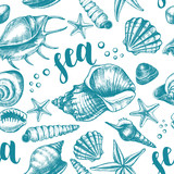 Decorative seamless pattern with ink hand-drawn various types mollusk sea shells, starfishs, pebbles. Marine elements texture with brush calligraphy style lettering. Vector illustration. - 165212981
