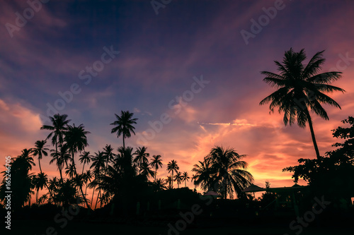Tuinposter Aubergine Silhouette of coconut trees against dramatic sunset sky background.