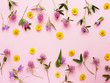 Flower pattern of wildflowers. Composition of flowers and plants. Top view. Floral abstract background. Flower concept. Clover flowers on a pink background. - 165270161