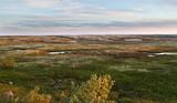 Dawn in tundra in the north of Russia