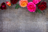 Colorful garden pink and red roses on a wooden background. Flat lay, top view with copy space.