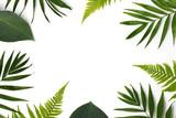 frame of green leaves - 165336106