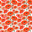 Wildflower poppies flower pattern in a watercolor style. Full name of the plant: poppies. Aquarelle wild flower for background, texture, wrapper pattern, frame or border.