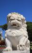 Chinese lion stone statue. Oriental statue