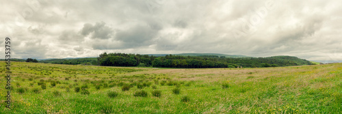 panoramic view of summer countryside,Northern Ireland