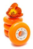 Orange wheels and tulip
