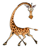 Cartoon image of giraffe. An artistic freehand picture. - 165421588