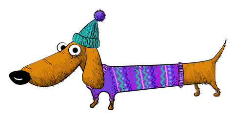 Cartoon image of dachshund. An artistic freehand picture.
