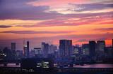 Tokyo Sunset Cityscape. Tokyo, Japan