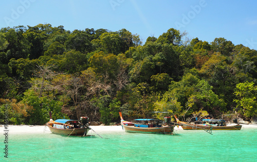 Long tail boat parking at island , Lipe , Satun province , Thailand Poster