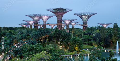 Gardens by the bay, Singapour Poster