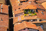 Typical terracotta roofs in Lucca