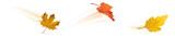 Herbstlaub im Wind - Blätter Set mit Bewegungsunschärfe - 165500521