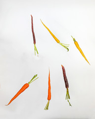 Colorful Rainbow Carrot