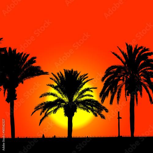 Papiers peints Rouge palmeras en la playa