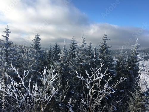 Riesengebirge bei Jelenia Góra im Winter - 165569964