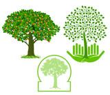 Baum  icon set, zeichen