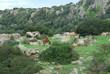 Quadro Fauna in Sardegna
