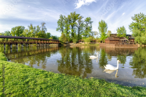 Two swans on river Danube and watermill and bridge in Kolarovo, Slovakia