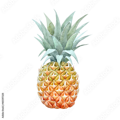 Watercolor pineapple fruit - 165597328