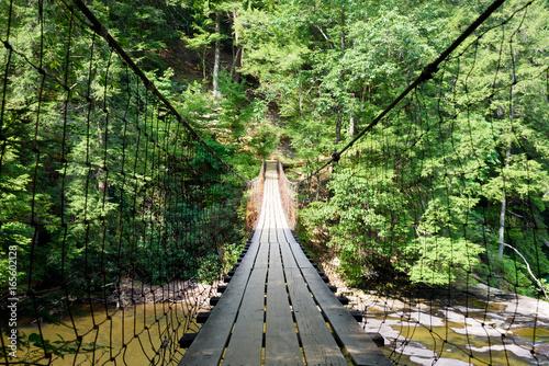 Suspension Bridge Over A Creek