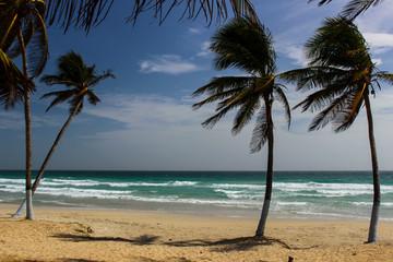 Beautiful beaches of Venezuela