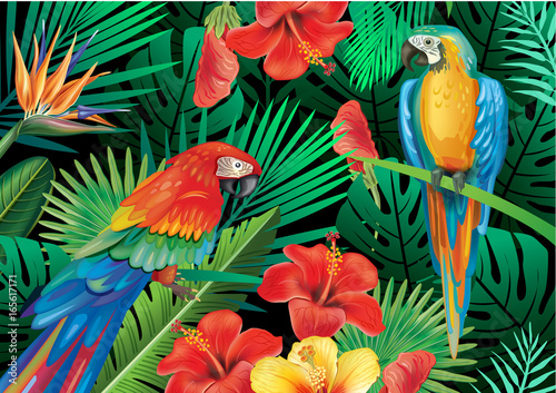 Fototapeta Parrots with tropical plants
