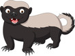 Cartoon honey badger - 165648300