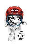 Żyrafa w czerwonym hełmie hokejowym.
