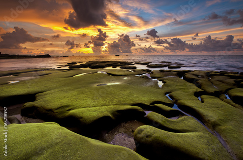 view of rocks covered by green moss at Tip of Borneo, Malaysia. Image contain soft focus due to long exposure.