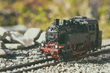 Model steam locomotive in garden - 165764946