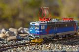 Model electric locomotive in garden - 165764956