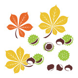 Chestnut icon or logo in modern line style. Vector illustration on a white background. - 165798724