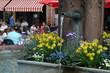 Entspanntes Leben. Brunnen in Offenburg