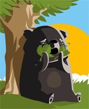 black bear crying in the woods