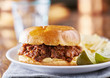 sloppy joe meal with potato chips and pickles - 165887918