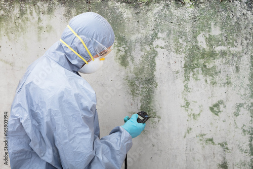 Pest Control Worker Examining Pest On Wall Poster
