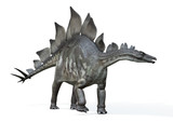 Stegosaurus Von Links 3drendering Wall Sticker