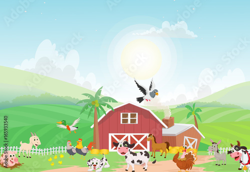 illustration of farm animal with background