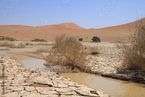 Namibia - Dead vlei lake
