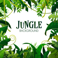 Jungle Tropical Leaves Background. Palm Trees Poster. Vector illustration
