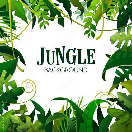 Fototapeta Jungle Tropical Leaves Background. Palm Trees Poster. Vector illustration