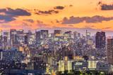 Tokio, Japonia Pejzaż