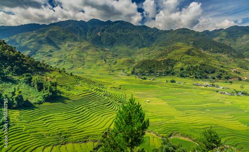 Staande foto Natuur Yen Bai