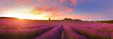 Fototapeta Lawenda - Panorama of lavender field at sunrise, Provence, France © denis_333