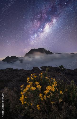 Voie lactée au dessus du Piton des Neiges, Île de la Réunion, France