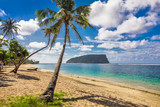Tropical beach with a coconut palm trees and a beach fales, Samoa